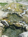 The pools at the spring