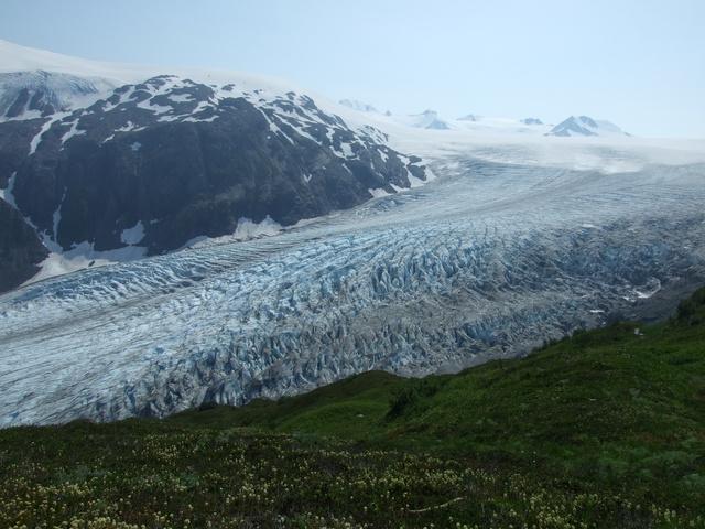 exit glacier 640x480