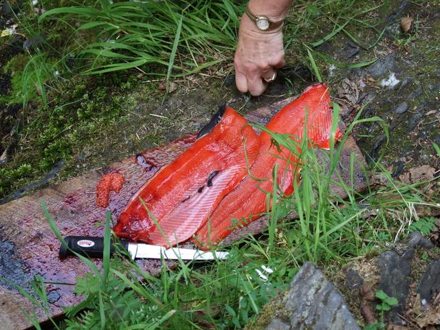 salmon fillet 640x480