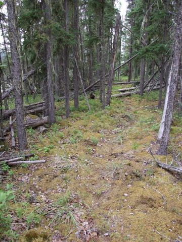 portage trail 360x480