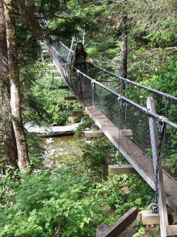 indiana jones bridge 360x480
