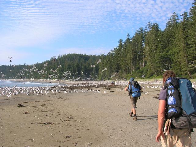 mike dan beach 641x480