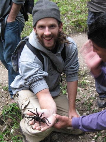 dan tarantula 360x480