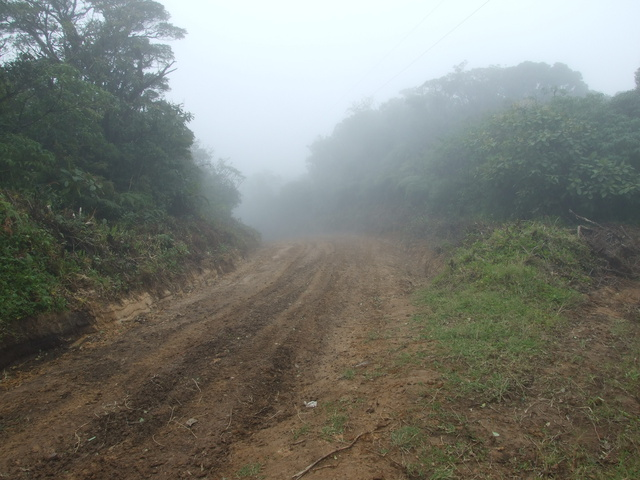 hiking cloudforest 640x480