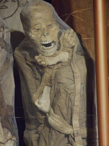 mummy 360x480