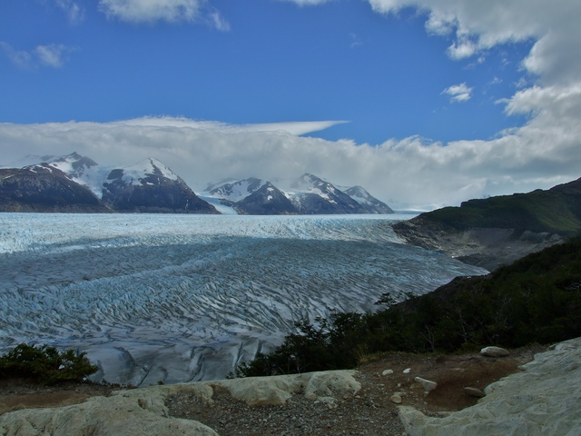 immense grey glacier 640x480