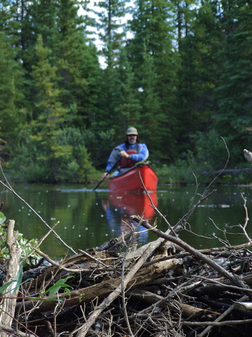 brett solo canoe 360x480