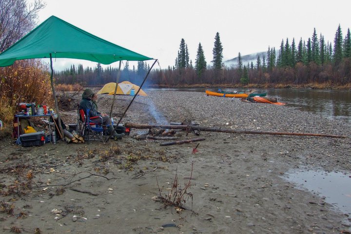 campsite with moose 720x480