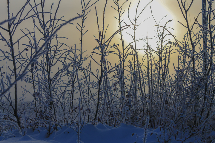frosty sun 720x480