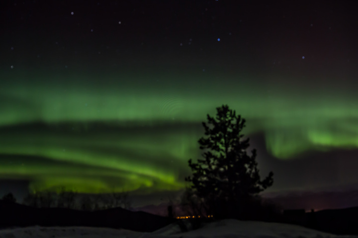 northern lights whitehorse 720x480