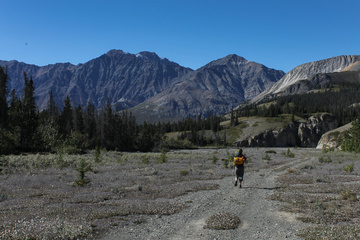 The early parts of the Slims River West trail are open and spectacular