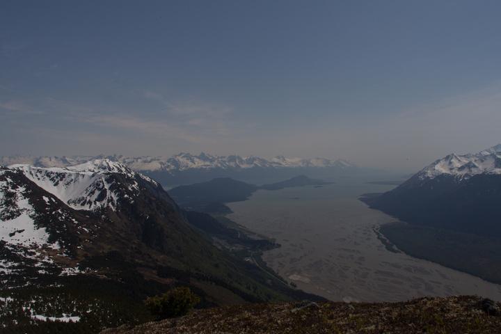 chilkat-river-meets-ocean