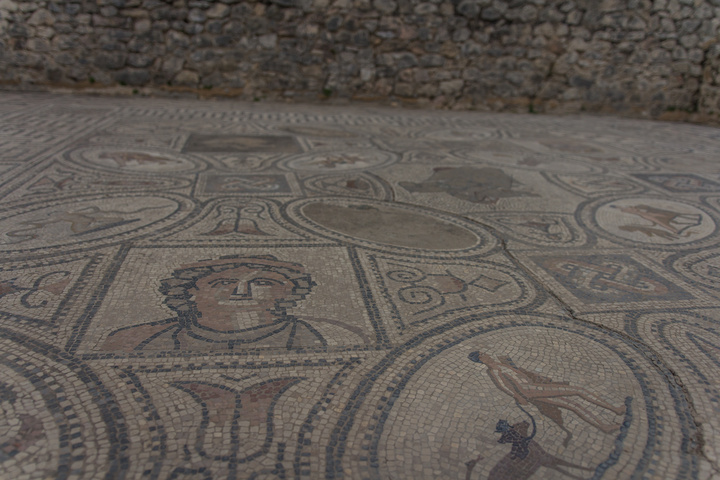 The details were extremely fine and well preserved