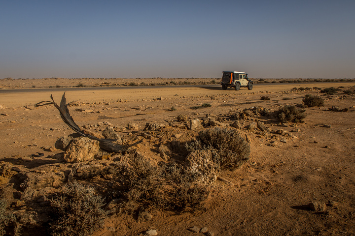 Western Sahara appears endless, with hundreds and hundreds of miles like this