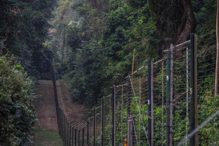 nigeria drill rannch chimp fence 720x480