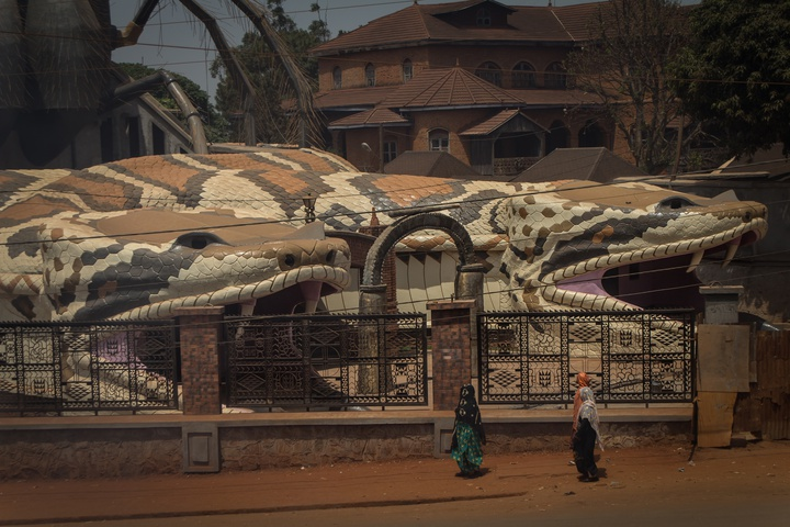 foumban musemum massive snake spider close 720x480