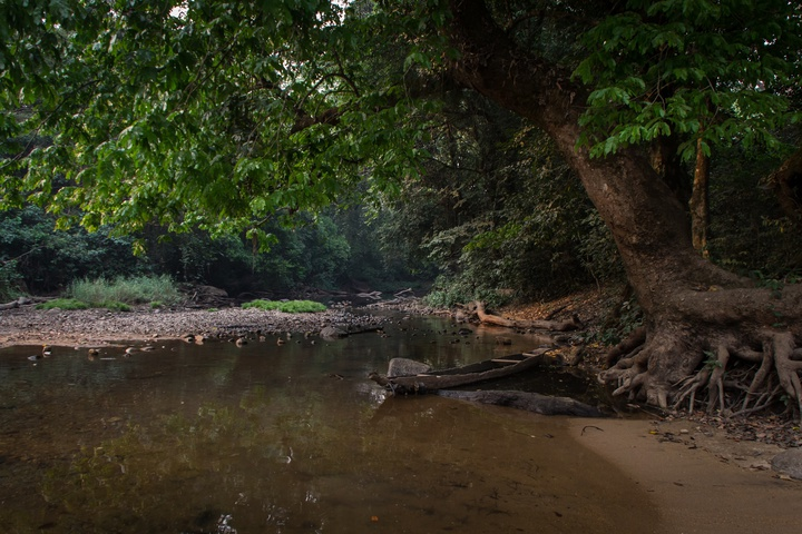 nigiera to cameroon border river 720x480