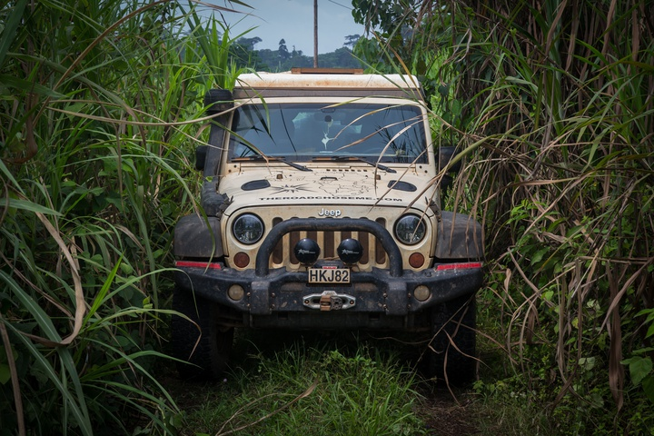 africa jeep jungle 720x480