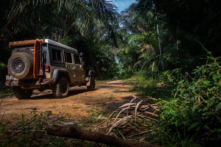 jeep africa jungle rear 720x480