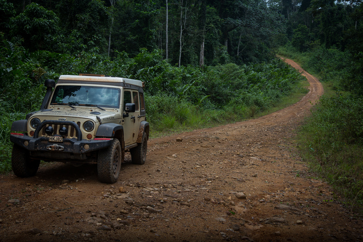 jeep africa jungle road 720x480
