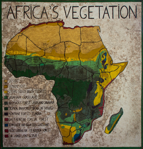 africas vegetation map 461x480