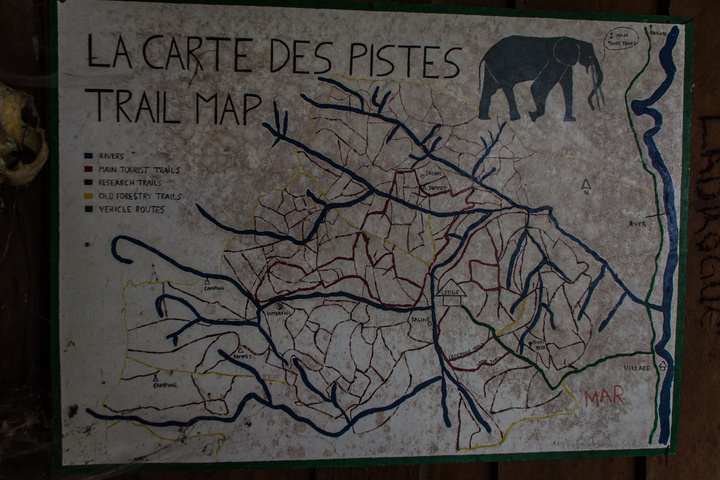 lope gorilla station trail map 720x480