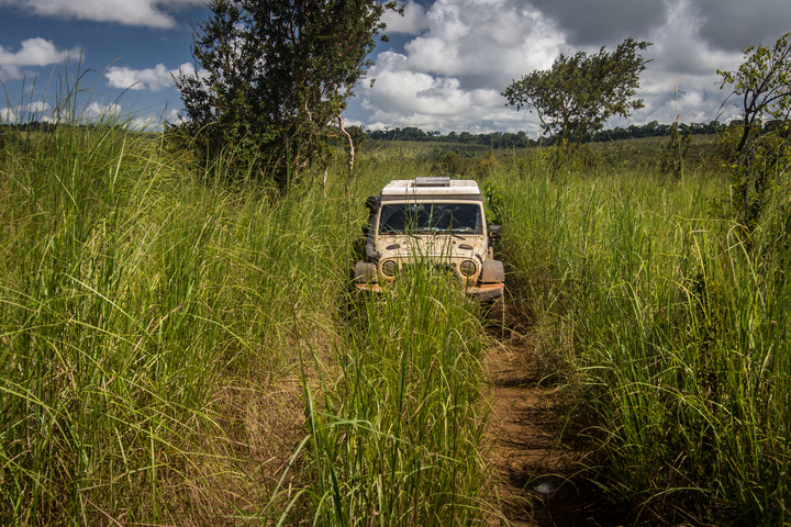 drc long grass road jeep 720x480