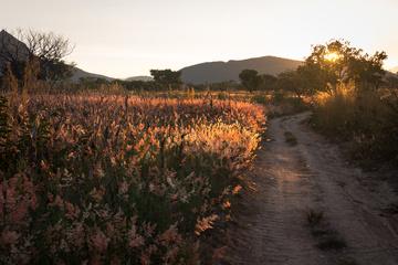 Sunset near the wildcamp