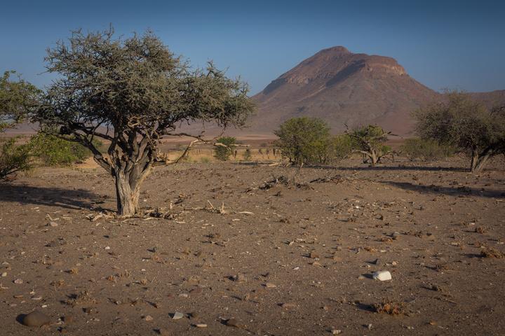 barren landscape 720x480