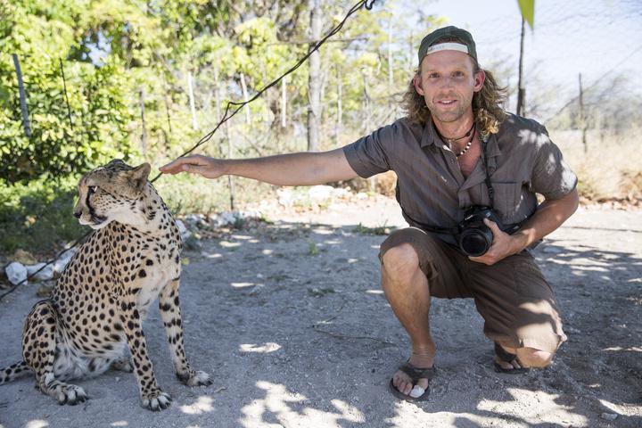 dan cheetah namibia 720x480