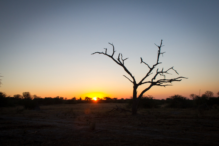 moremi sunset 720x480
