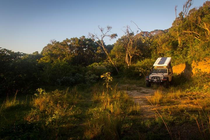 wild coast forest campsite 720x480