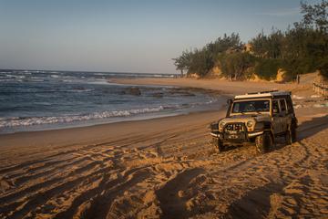 Jeep enjoying some beach time