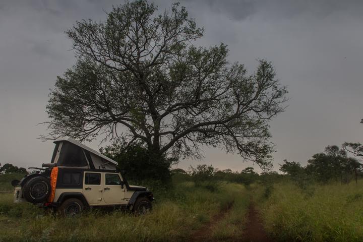 jeep wildcamp swazi 720x480