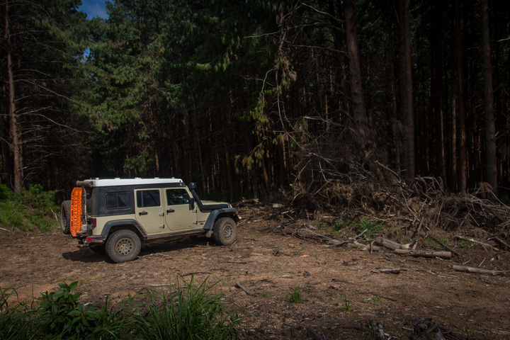 jeep lost in logging roads 720x480