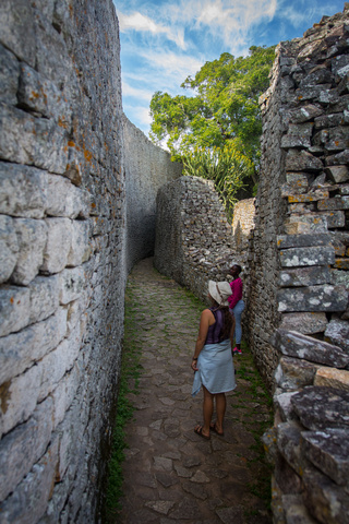 great zimbabwe em in walls 320x480