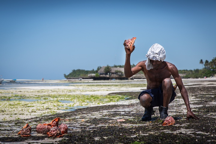 zanzibar paje beach guy with shells 720x480