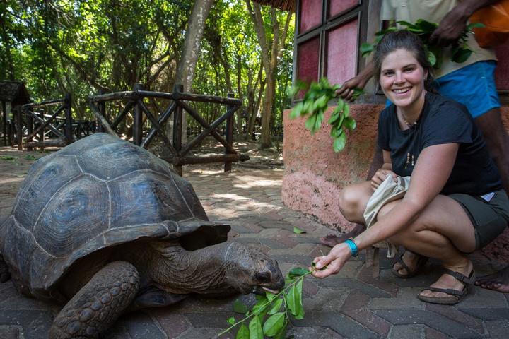 zanzibar prison island giant tortoise emily 720x480
