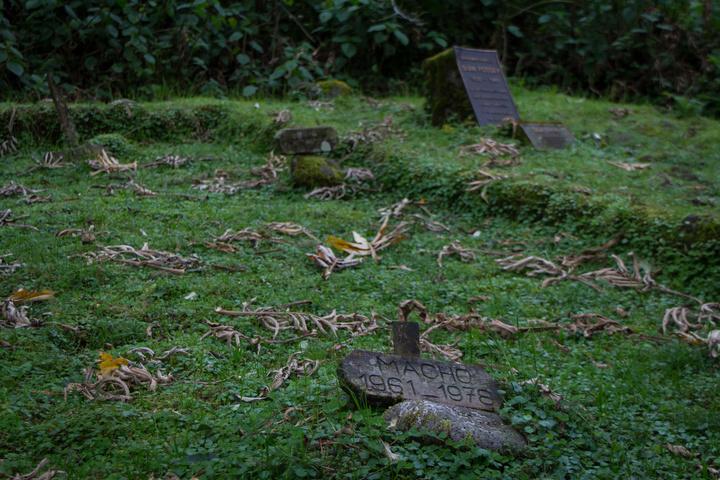 dain fossey grave site 720x480