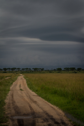 ishasha dirt road thunderstorm 320x480