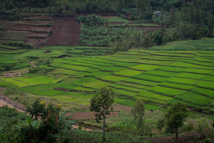 rwanda fertile valleys 720x480