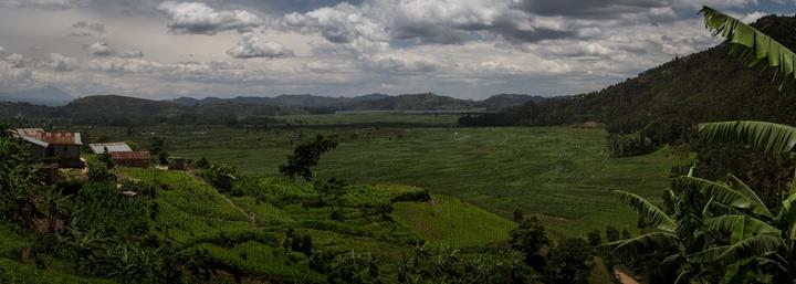 uganda farmland 720x257