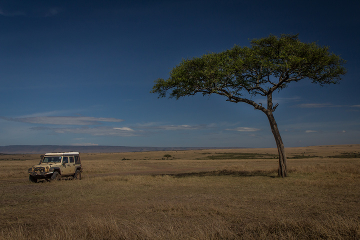 masai mara jeep lone tree 720x480