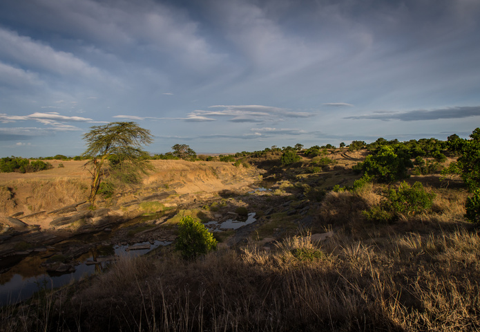 masai mara sunrise valley 695x480