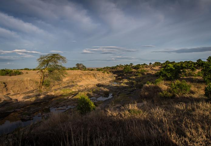 masai mara sunrise valley 695x480