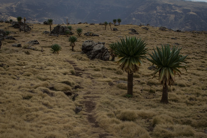simien mountains hiking trail 720x480